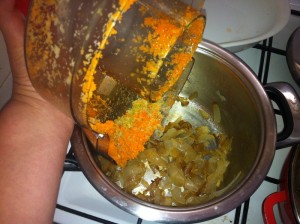 """את סיבי הגזר שנותרו במסחטה אפשר לנצל להעשרת התבשיל בסיבים תזונתיים. צולם ע""""י חן אדדי במטבח הביתי"""